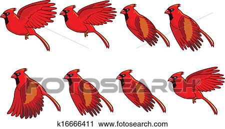 vty指标用法_鸟飞行动画 - www.nanreno.com