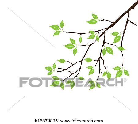 剪贴画 - 绿色图片