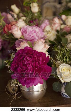 banque d 39 images vari t de fleurs dans blanc et pink californie etats unis am rique. Black Bedroom Furniture Sets. Home Design Ideas