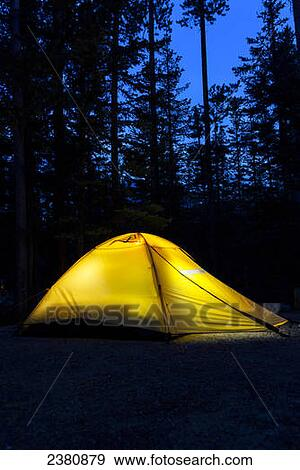 Stock Photograph - Tent in the woods at night glowing with deep dark blue sky; : glowing tent - memphite.com