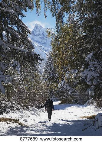 Madre suiza en el bosque