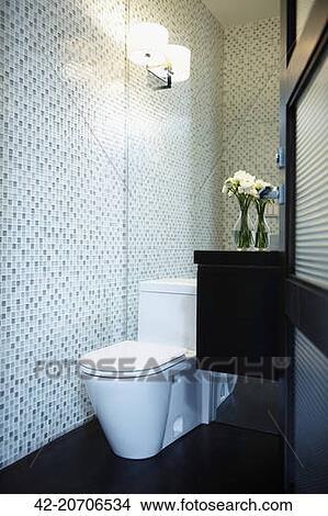 Stock foto toilet in schoonmaken modernist badkamer 42 20706534 zoek foto 39 s fresco - Donker mozaieken badkamer ...