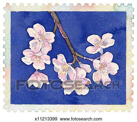 Stock illustration cherry blossom fotosearch search vector