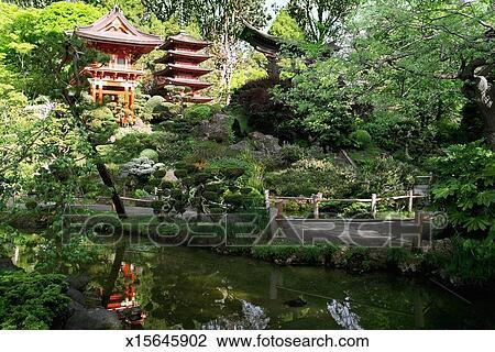 写真素材・動画素材・イラスト素材写真館、イメージ館 - アメリカ, カリフォルニア, サンフランシスコ, ゴールデンゲートパーク, 日本の茶庭, 仏教の 寺院