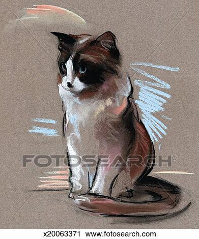 Clipart assis chat x20063371 recherchez des clip arts des illustrations des dessins et - Dessin chat assis ...