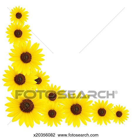 Stock Photo of Sunflower Corner Border x20356082 - Search ...