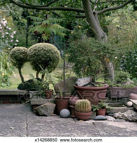 Stock photography of english garden x14268850 search for English garden wall mural