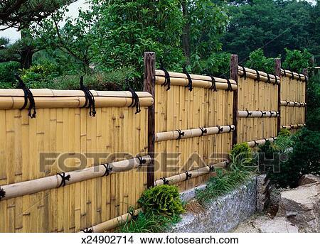 stock foto bambus zaun x24902714 suche stockbilder. Black Bedroom Furniture Sets. Home Design Ideas