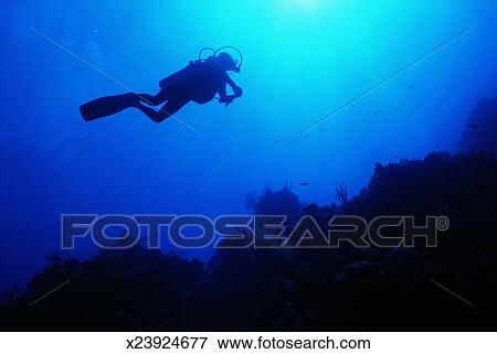 Picture of man scuba diving at bloody bay wall underwater for Bloody bay wall mural