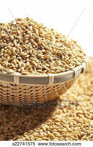 banque d 39 image japonaise short grain riz oryza sativa subsp japonica dans panier. Black Bedroom Furniture Sets. Home Design Ideas