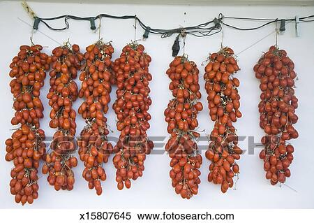 stock bild sonne trocknen roma tomaten in praiano. Black Bedroom Furniture Sets. Home Design Ideas