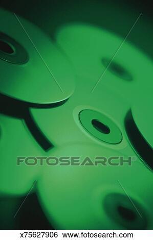 american cd cd essay garden hydrangeas photographic rom