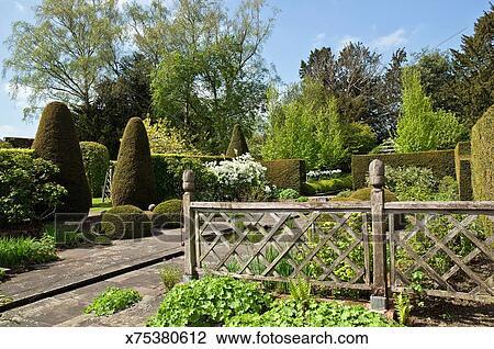 stock foto - starke, formen, gartengestaltung, design, englischer, Garten ideen