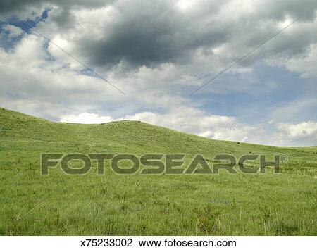Stock photo of green grassy field with blue sky and clouds x75233002 green grassy field with blue sky and clouds voltagebd Images