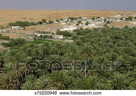Pictures of Oasis AlHawiyah Wahiba Sands AlSharqiyah Region