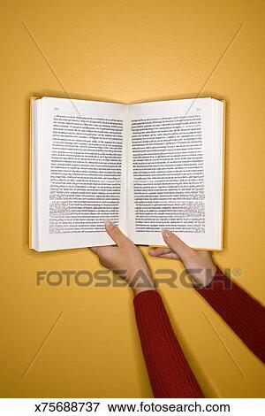 Book Titles In Essays