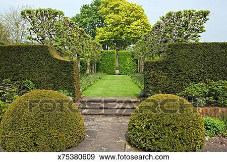 stock fotograf - klassische, englischer garten, hart, Garten ideen