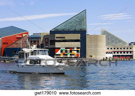 Baltimore - Wikipedia, la enciclopedia libre