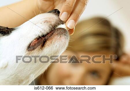 Dildo injection sperm