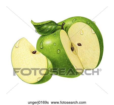 Sliced Apple Drawing One Green Apple With a Slice
