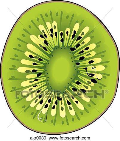 Kiwi Slice Drawing Slice of Kiwi