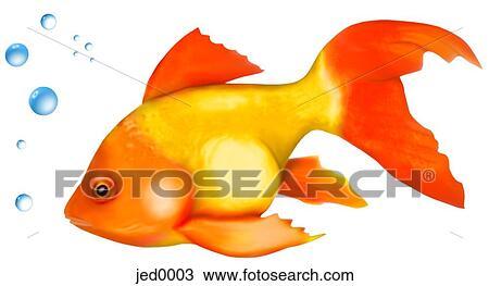 Dessin poisson rouge jed0003 recherchez des cliparts for Prix poisson rouge maxi zoo