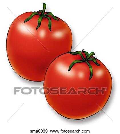 Dibujo - dos, tomates sma0033 - Buscar Clip Art, Ilustraciones de ...