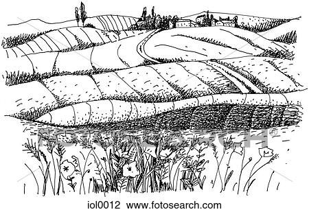 Lucky Bugger 677359044 besides U10802953 also Trauben Weinstock 16971923 further 36997421136 together with Black White Illustrations. on vineyard art prints