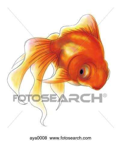 Banque d 39 illustrations a poisson rouge aya0008 for Prix poisson rouge maxi zoo