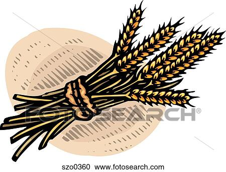 Stock Illustrations of bundle of wheat szo0360 - Search ...