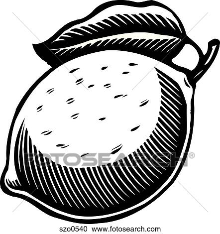 Stock Illustrations Of A Big Ripe Lemon In Black And White Szo0540