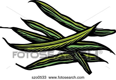 Cooked green beans Illustrations and Clipart. 103 cooked green ...
