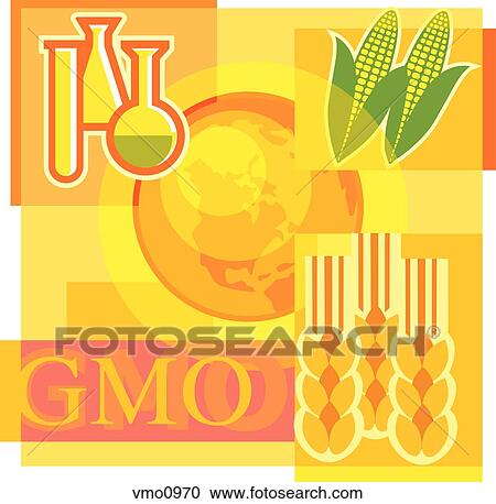 "genetically modified organisms and the world According to world health organization, genetically modified foods are ""foods derived from organisms whose genetic material (dna) has been modified in a way that does not occur naturally, eg through the introduction of a gene from a different organism."