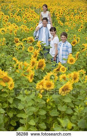 Immagini sorridente famiglia tra girasoli in - Soleggiato in inglese ...