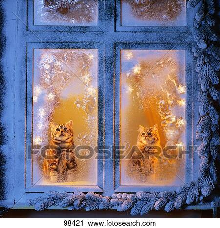 картинки окна в узоре от мороза