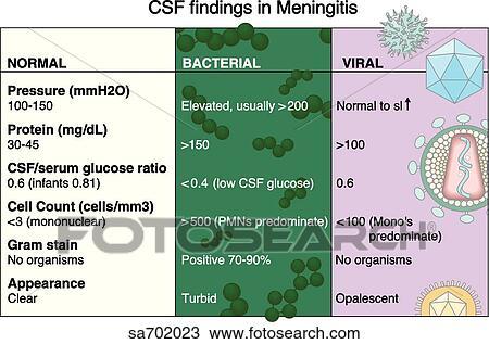 Viral Meningitis Csf