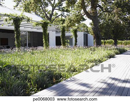 Archivio fotografico patio e giardino in retro di for Disegni di casa patio