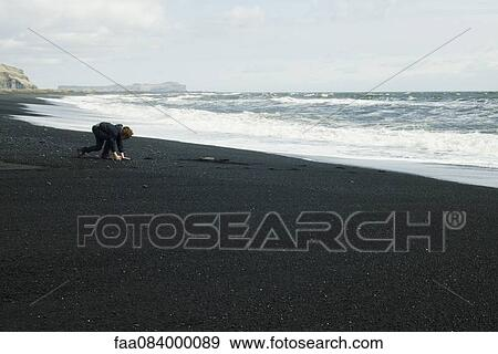 Stock Photograph of Boy picking up the black sand beach, Iceland ...