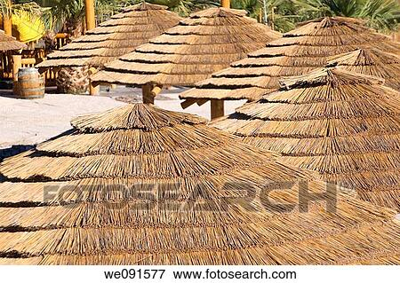 Picture   Thatched Roof Palapa Huts Along A Sandy Beach On The Colorado  River In The