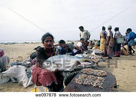 Pictures Of Fish Sale In Marina Beach Chennai Madras