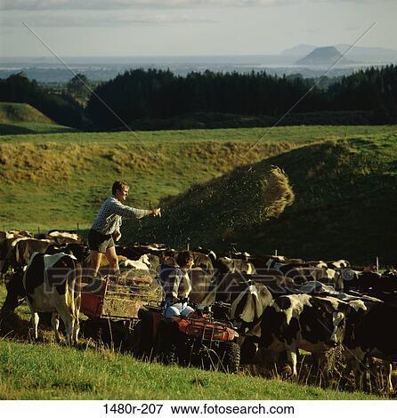 FARMING PEOPLE farmers? cows???