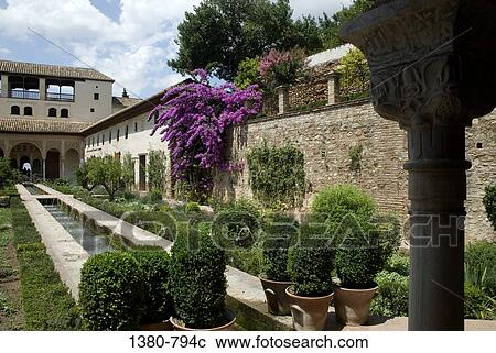 stock fotografie blumen pflanzen in a kleingarten alhambra granada andalusien spanien. Black Bedroom Furniture Sets. Home Design Ideas
