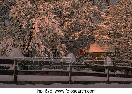 Stock Image Of Snow Covered Trees In Montgomery County