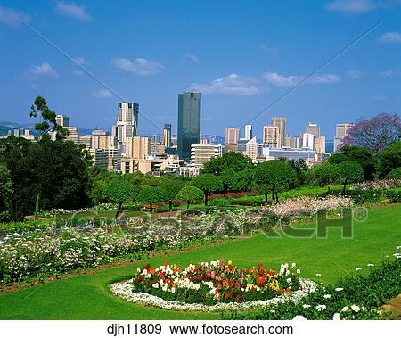Stock Photograph   Skyline From Union Building Gardens, Pretoria,  Witwatersrand, Gauteng, Transvaal