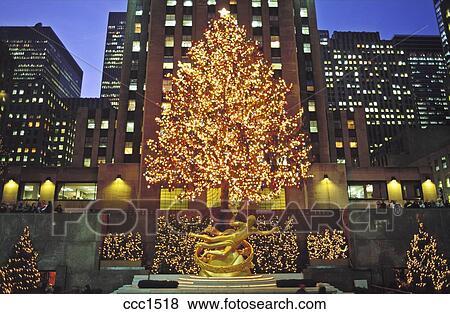 زيتة عيد الميلاد Ccc1518