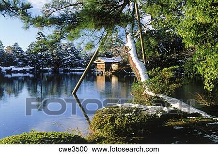 Banco de fotograf as jard n de kenrokuen en invierno for Jardin kenrokuen en kanazawa