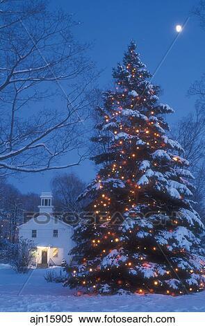 decoracin feriado rbol nieve invierno vermont un grande nieve cubri rbol de navidad es rociado con diminuto colorido luces exterior