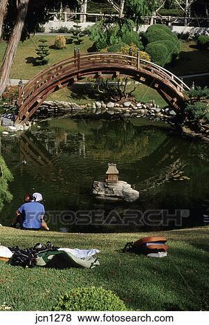 images jardin japonais lune pont et lotus tang huntington jardins botaniques saint. Black Bedroom Furniture Sets. Home Design Ideas