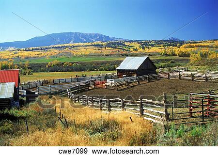 archivio fotografico casa fattoria e bestiame o