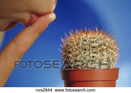 Banque de photo personne baisers propre doigt for Blessure levre interieur